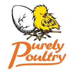 Purely Poultry Blog