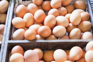 Eggs for Sale at the Farmers Market