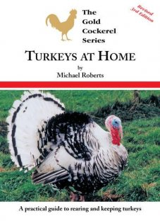 Turkeys at Home