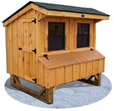 Amherst Chicken Coop
