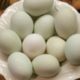 Easter Egger Chicken Eggs