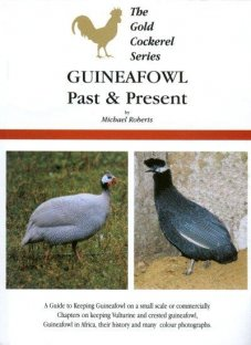 Guinea Fowl Past and Present