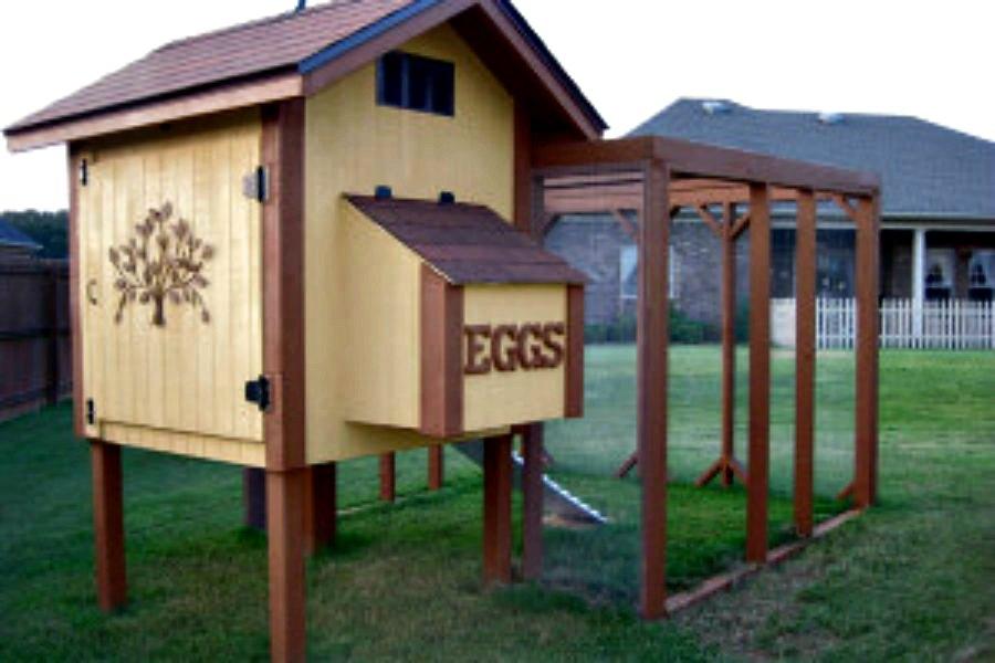 A Frame Coop Plans: Bella Chicken Coop Plan