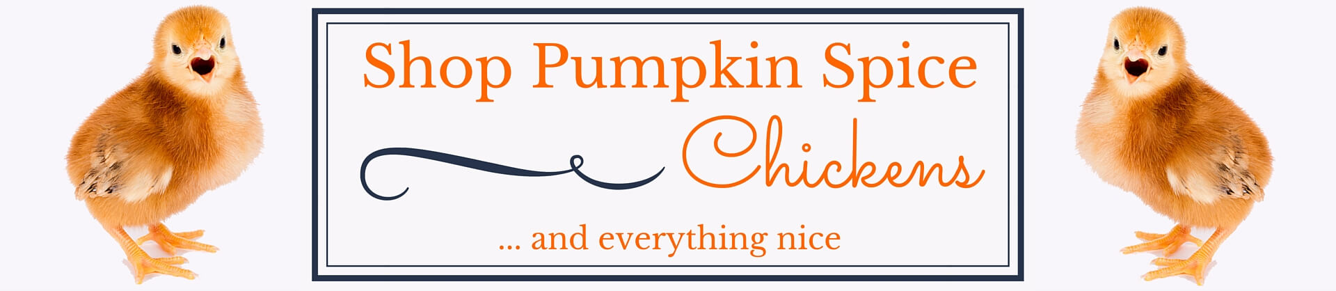 Shop Pumpkin Spice Chickens Today