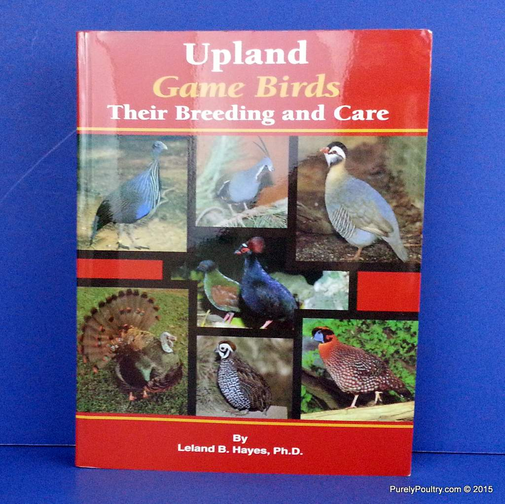 Upland Game Birds Their Breeding and Care